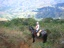 trail rides nicatagua